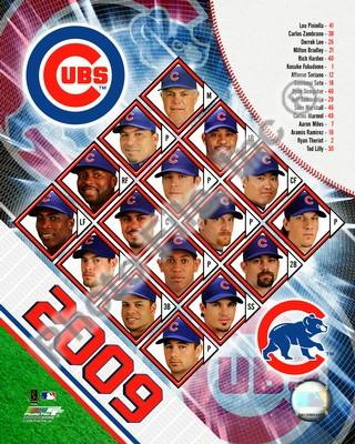 Chicago Cubs 2009 Team Composite 8x10 Photo